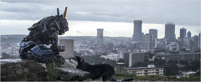 Chappie - Neil Blomkamp - Chappie chien