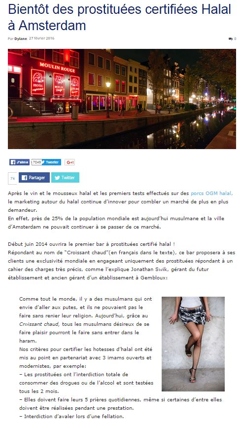 Nordpresse - prostituées Halal Amsterdam