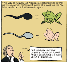 Brenot - Coryn - Sex Story - Spermatozoide