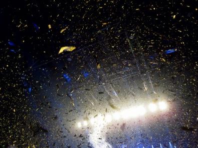 Queen + Adam Lambert @palais12 (160)