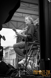 FamilyZik Festival 2016 - Photos Olivier Gilgean (120)