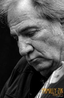 FamilyZik Festival 2016 - Photos Olivier Gilgean (98)