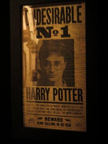 Harry Potter The Exhibition - Bruxelles (73)