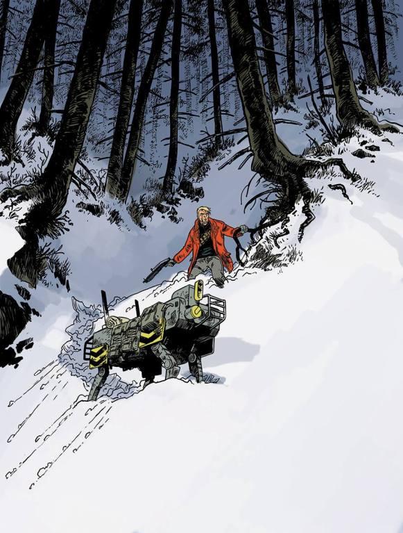 Soleil Froid - Pecau - Damien - T.1 - H5n4 - foret neige