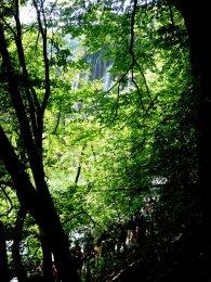 voyage-vacances-croatie-2016-lacs-de-plitvice-82