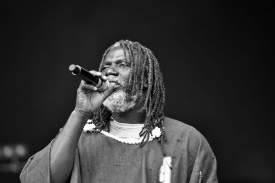 Tiken Jah Fakoly @LesSolidarités - Benoit Demazy (4)