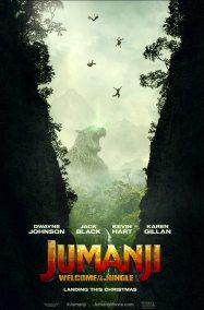 Jumanji - Bienvenue dans la jungle - Dwayne Johnson - Jack Black - Kevin Hart - Karen Gillan - affiche - chute