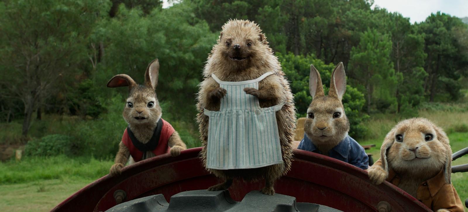 Les cloches de p ques en ont profit pour poser un lapin for Abreuvoir lapin fait maison