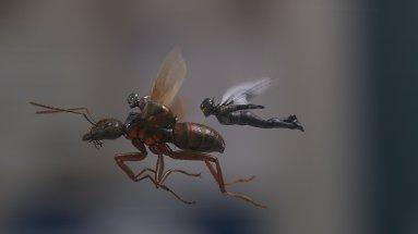 Ant-Man et la guêpe - super-héros - Paul Rudd - insecte